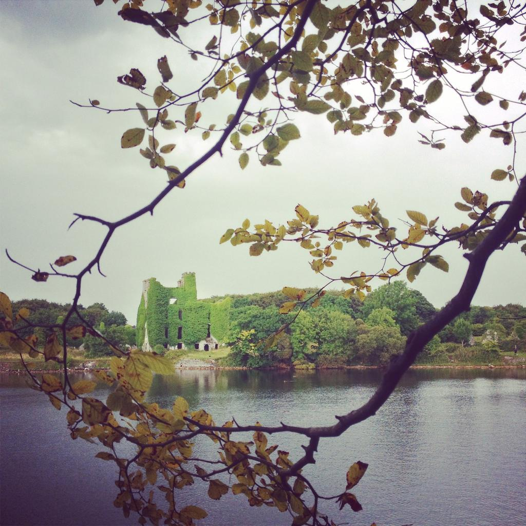 Menlo Castle from Dangan, Galway