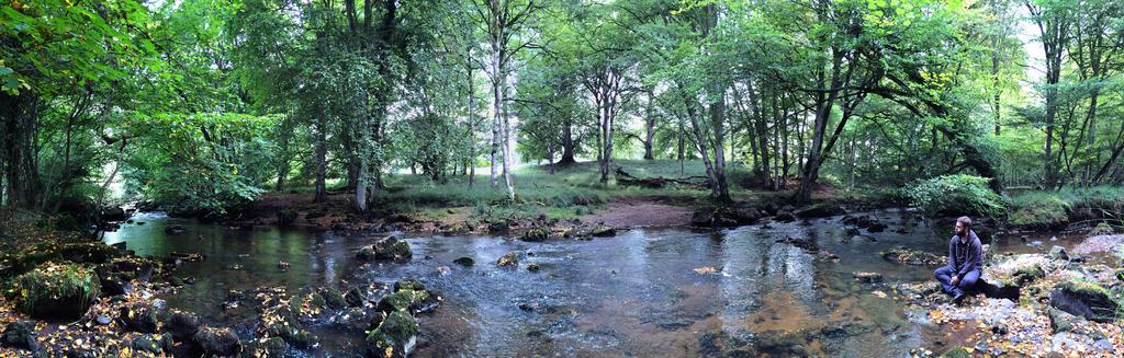 Meditation by the river at Charleville Castle
