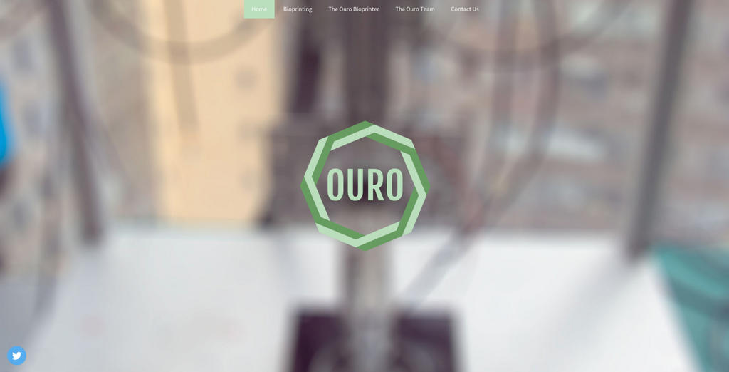 The Ouro website