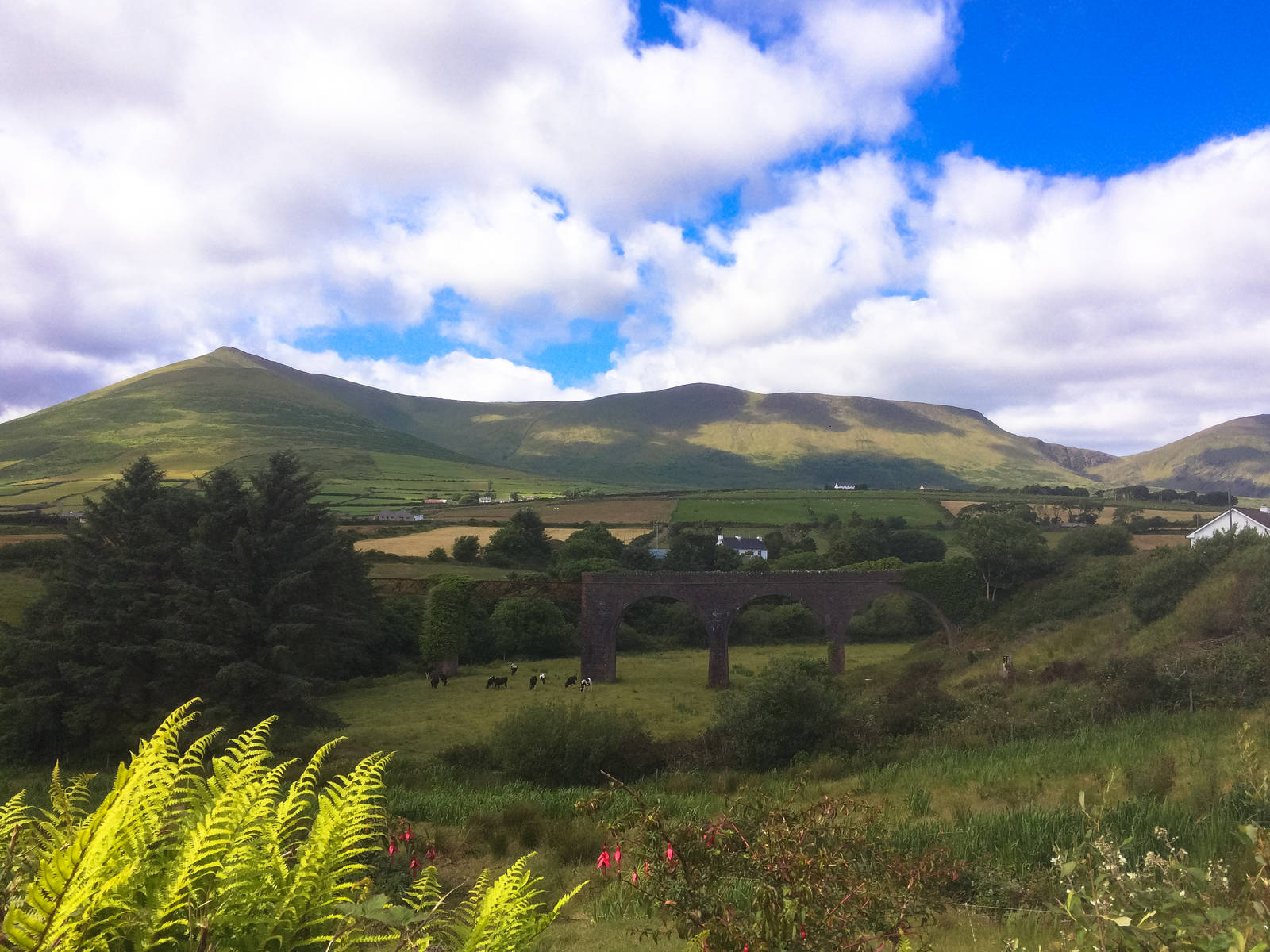 View from the roadside near Dingle