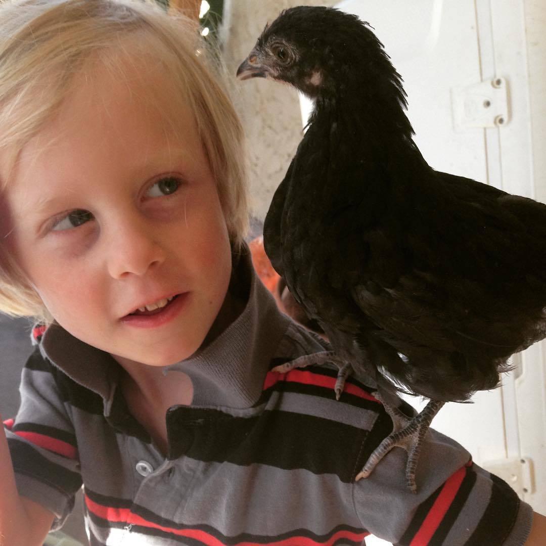 Garrett with a hen