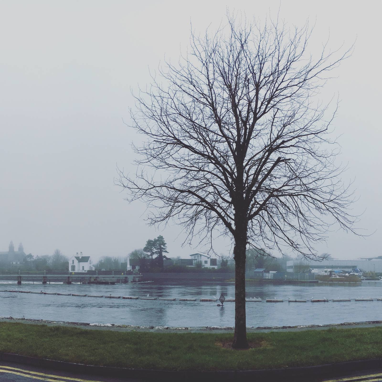Misty night at Waterside