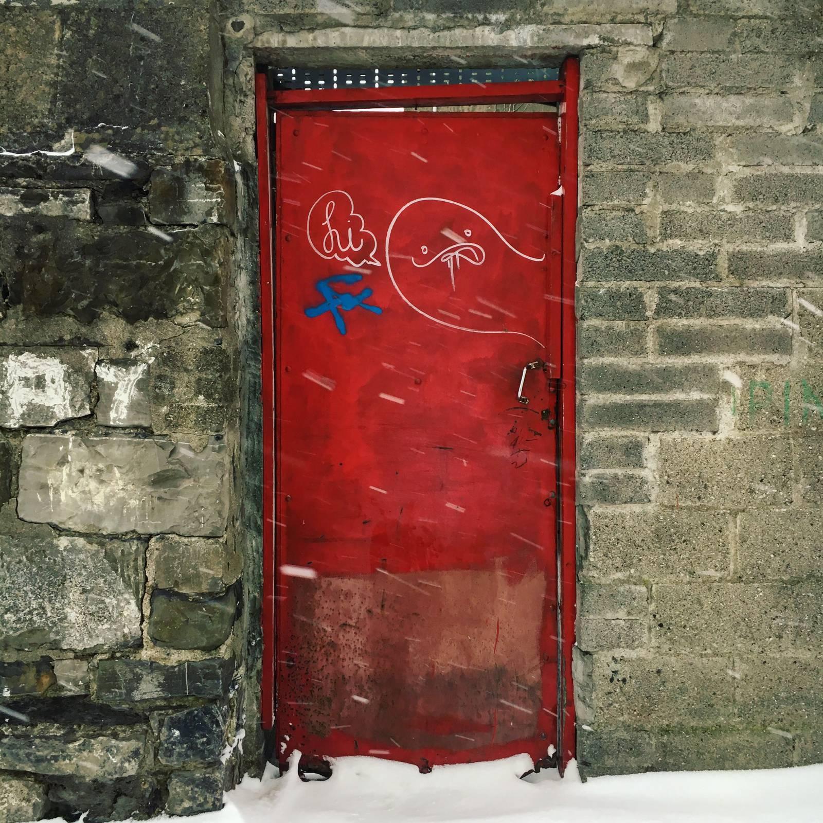 Red door in white snow