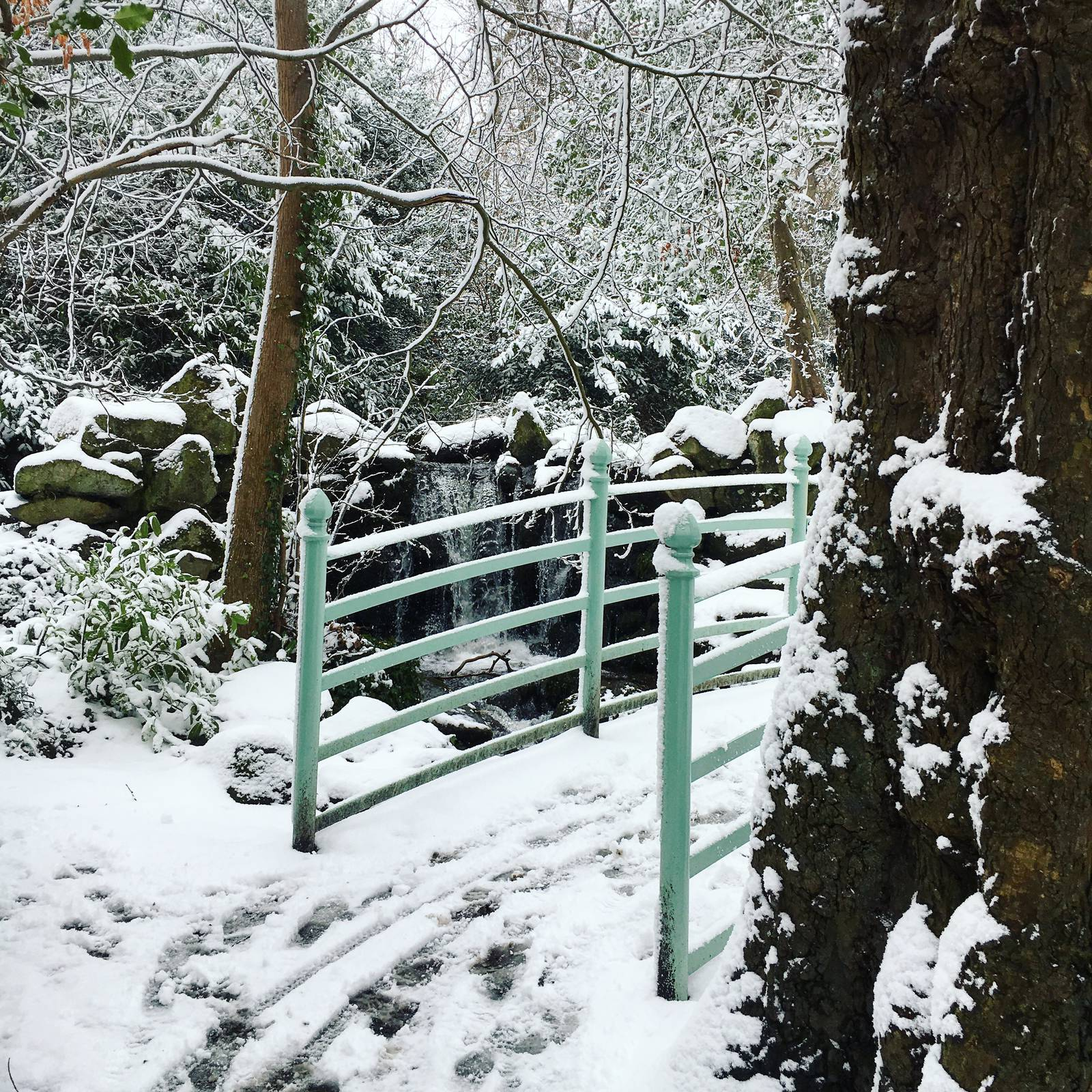 Marlay Park environs covered in snow