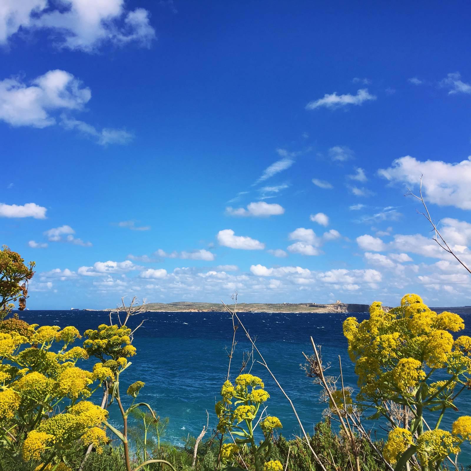The island of Comino