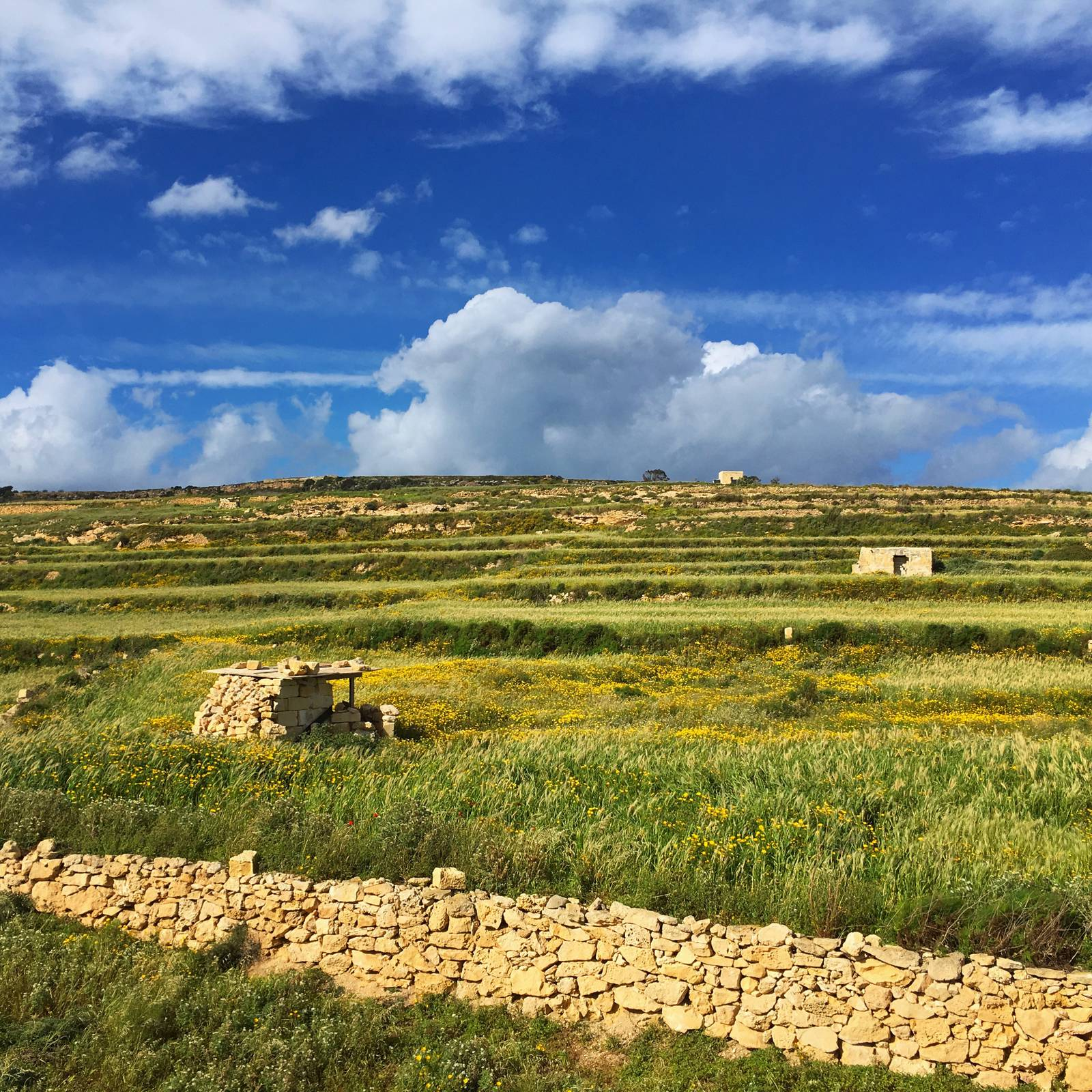 Maltese countryside near Mgarr