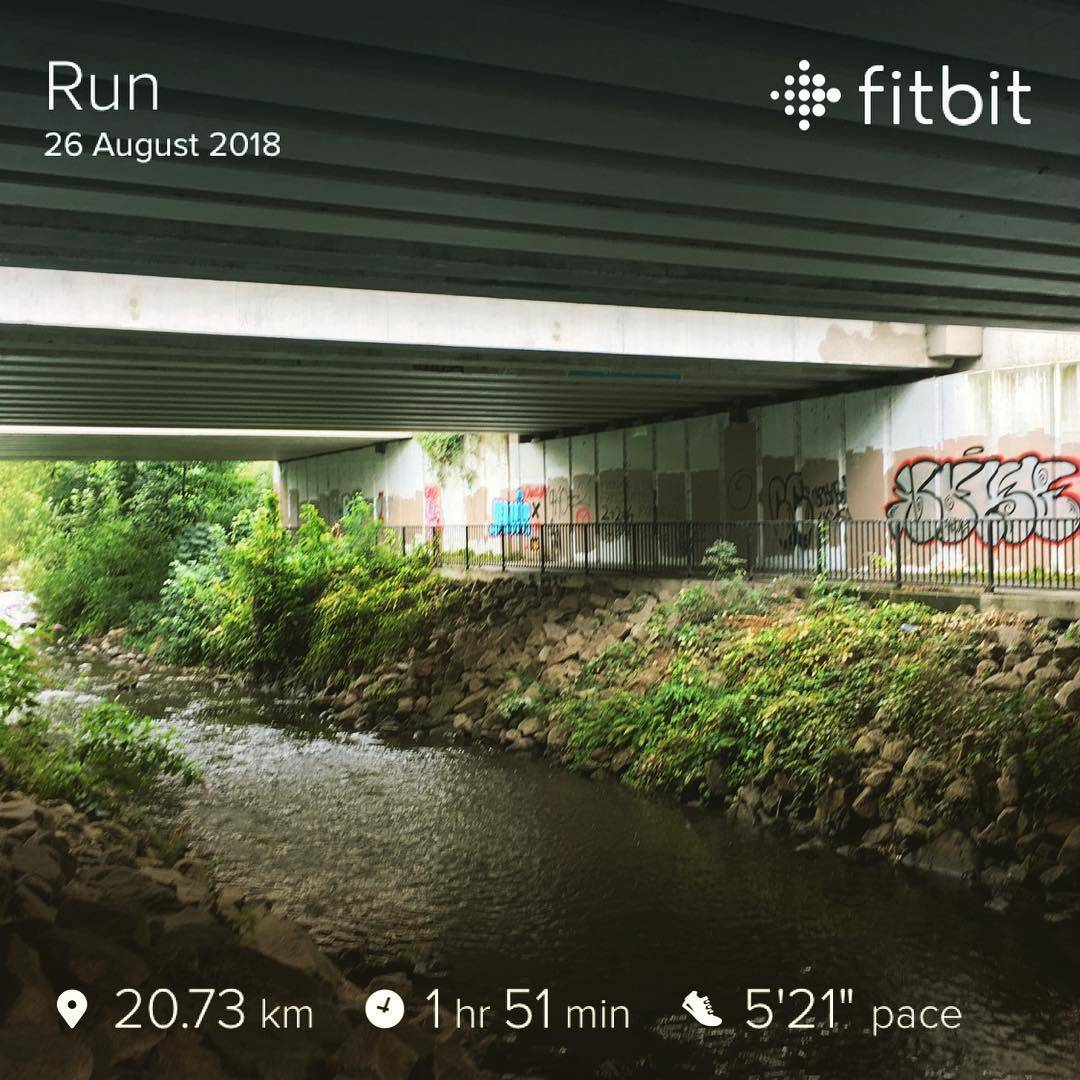 Fitbit running results for Dodder loop