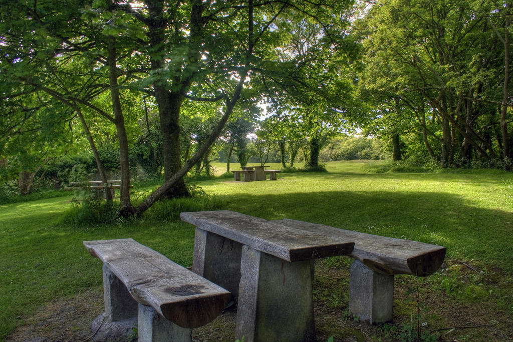 Picnic tables HDR